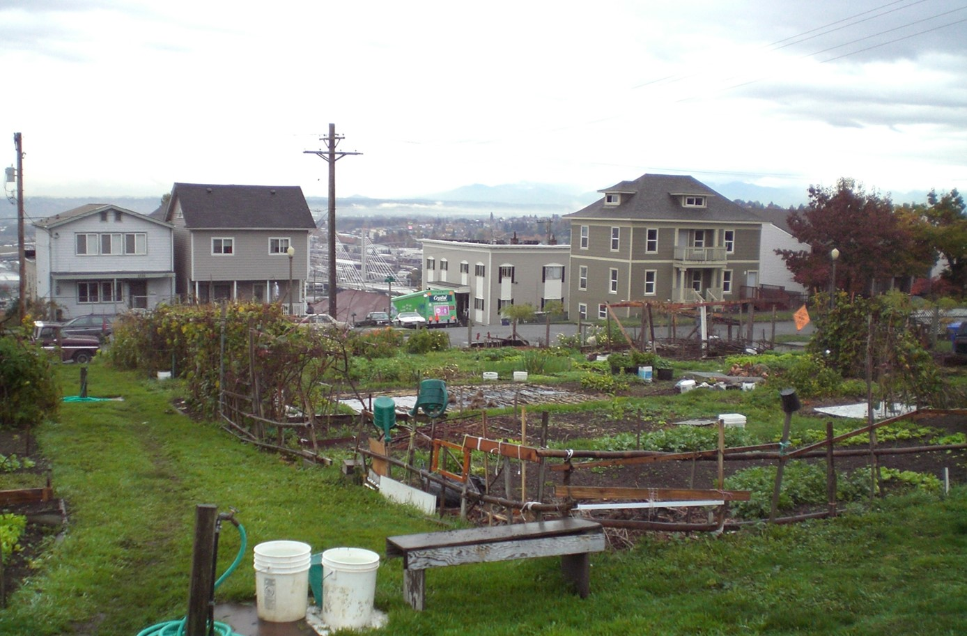 Gentil ... Of The Community Gardening Groups Interested In Gardening On  Brownfields Are Disproportionately Located In Urban Areas And Many Of The  Sites Selected As ...